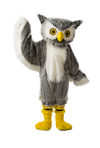 Picture of Hoot, the bank mascot.